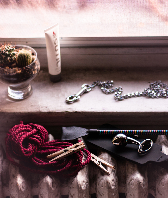A bundle maroon rope, two clothes pins, an njoy steel butt plug, silicone paddle, rainbow colored crop, metal chain, bottle of lube, and a glass bowl of two cacti restng on a dimly lit window sill.